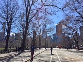 Many of New York's Best Hotels are located near Central Park.